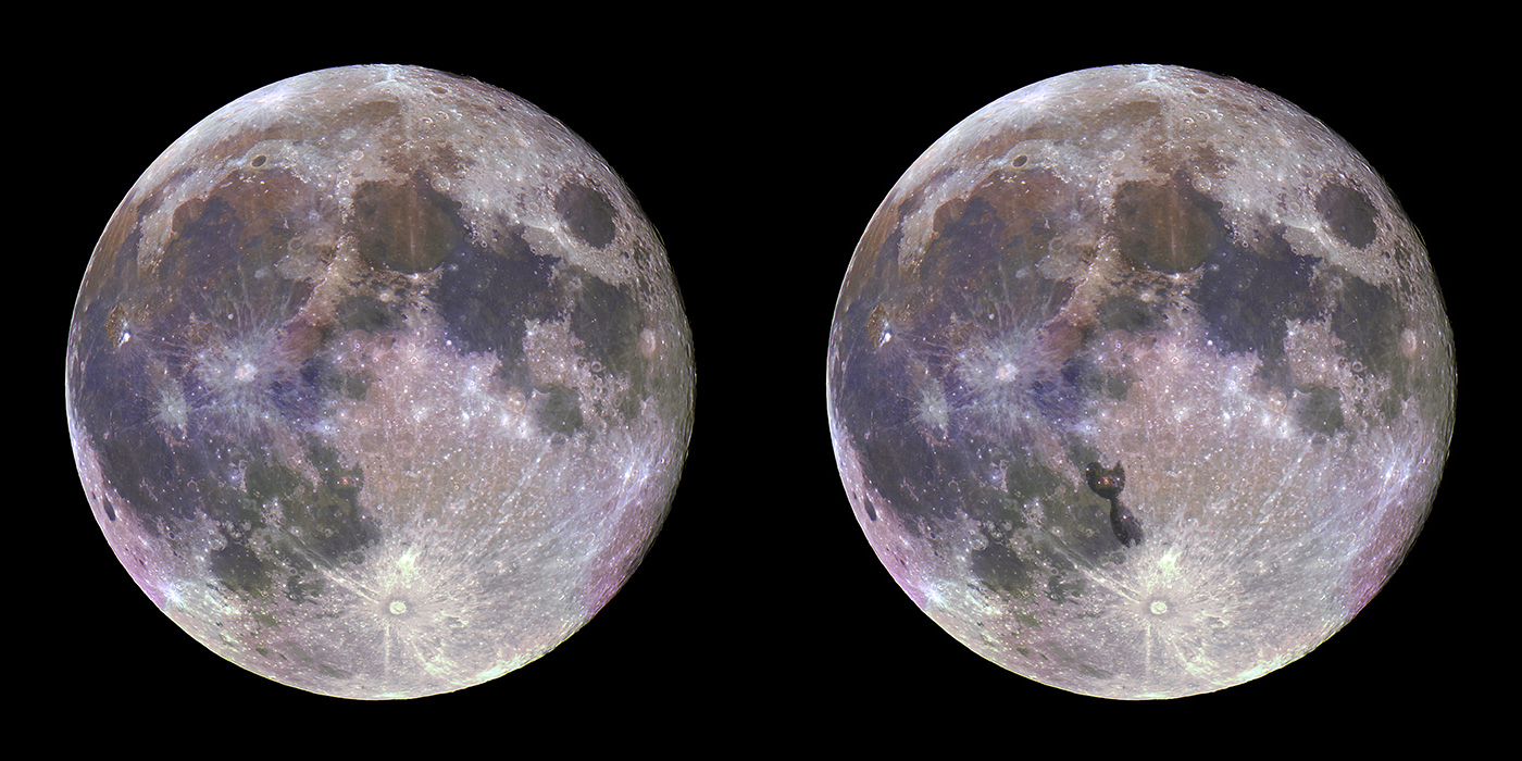 180201_Blue-Moon_WEB_F_01.jpg